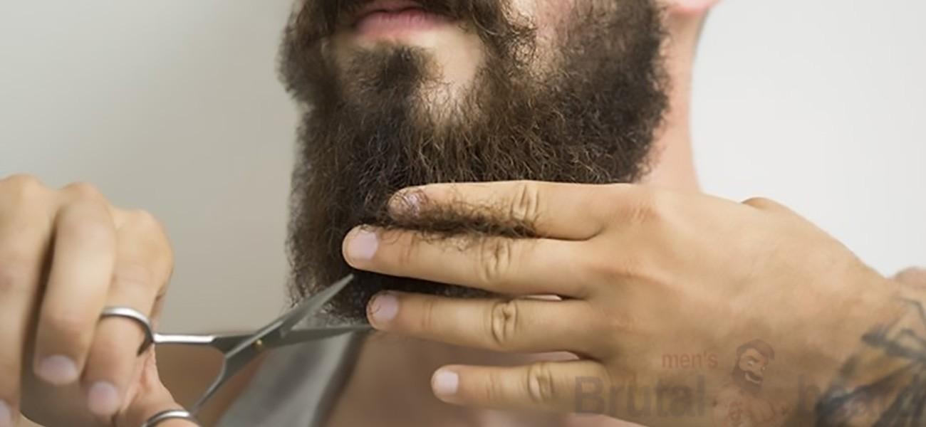 Как стричь бороду>