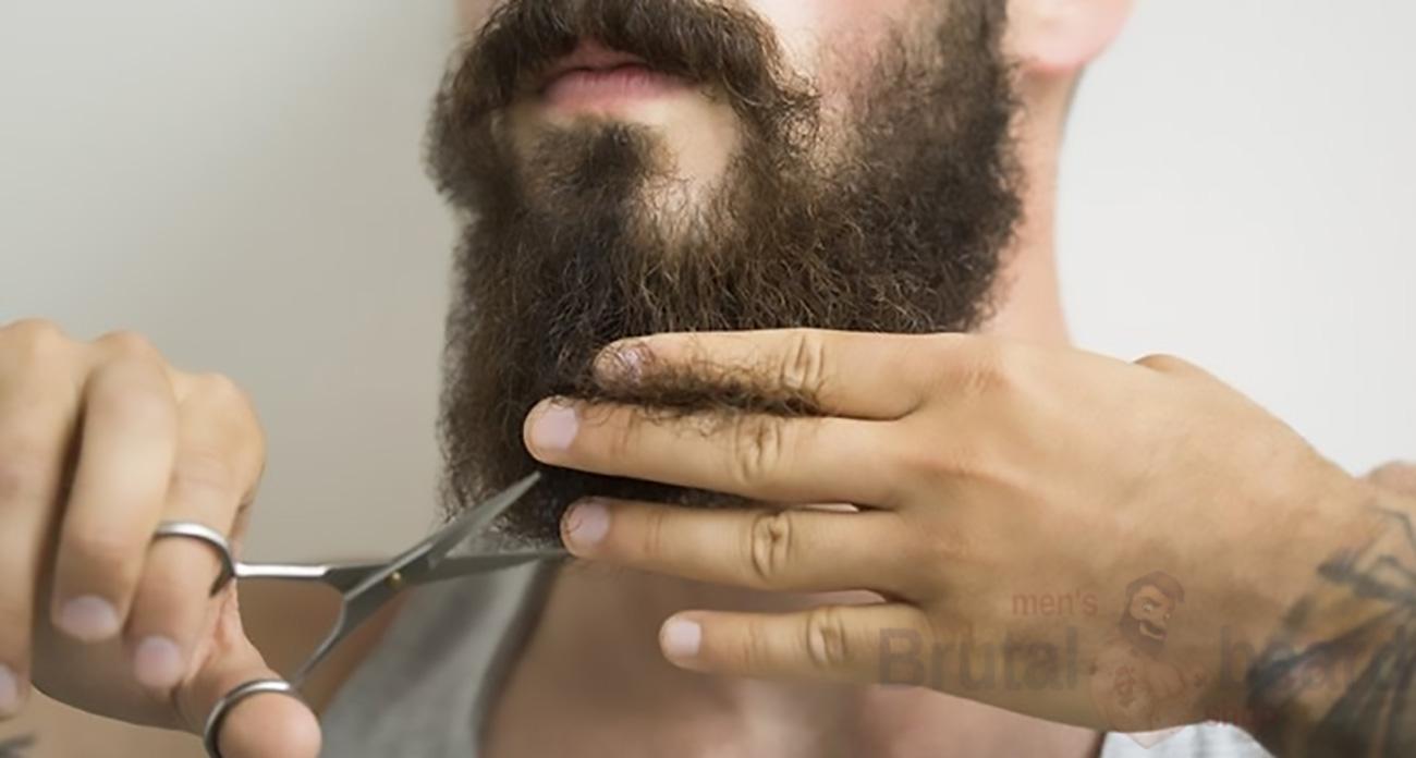 Густая борода в домашних условиях 141
